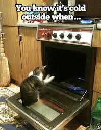 You know it's cold outside - Funny Images and Memes To Fill You Up ... via Relatably.com