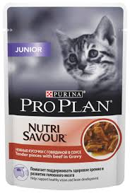 Товары для крупных котят - купить товары для крупного котенка ...