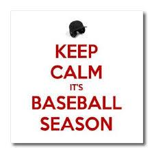 Amazon.com: EvaDane - Funny Quotes - Keep calm its baseball season ...