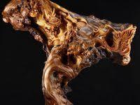 корень: лучшие изображения (36) в 2019 г. | Wood art ...