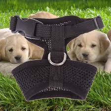 Dogs Chest Straps Adjustable <b>Pet Control Harness</b> Collar Safety ...