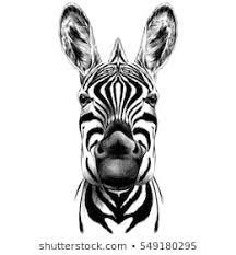 <b>Cartoon Animals Black White</b> Images, Stock Photos & Vectors ...