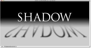 Image result for black and white shadow
