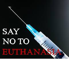 essay on euthanasia mercy killing don t hesitate to order a bing
