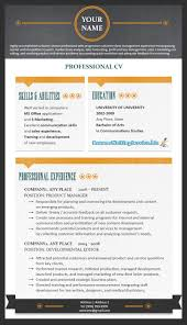 resume templates curriculum vitae writing examples cover curriculum vitae writing examples cover letter examples recent throughout 81 stunning professional cv template