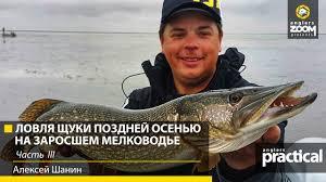 На что ловит ЩУКУ Алексей Шанин ОСЕНЬЮ? Часть 3 - YouTube