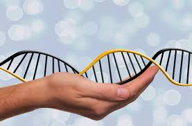 what s your career dna activ8 careers official website here s a new way to consider your career brand