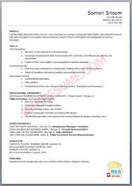 flight attendant cv no experience basic job appication letter flight attendant resume example