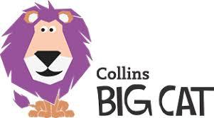 Big Cat Homepage