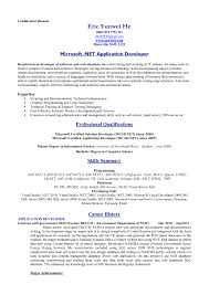 examples of resumes best standard resume format intensive care 89 enchanting professional resume formats examples of resumes