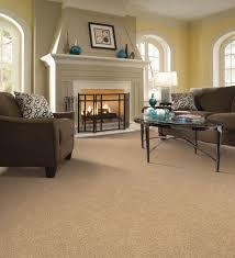 living room rugs x