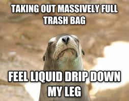 Dissatisfied Seal: TAKING OUT MASSIVELY FULL TRASH BAG FEEL LIQUID ... via Relatably.com