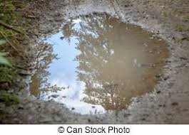 Image result for Puddle Pictures free