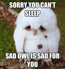 Sorry you can't sleep Sad Owl Is Sad For You - No Sleep Heres Sad ... via Relatably.com