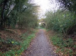 Image result for flitch way