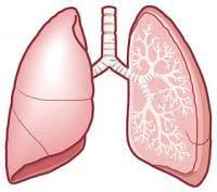 「慢性閉塞肺疾患と呼吸困難」の画像検索結果