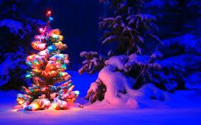 Bildergebnis für weihnachtsdesign