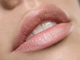 Image result for lip enhancement