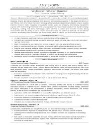 s business analyst cover letter financial representative resume best s representative resume perfect resume example resume and cover letter ipnodns ru