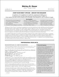 vice president of s resume resume sampl vp business vice president resume template