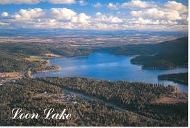 Image result for loon lake