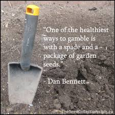 A few gardening quotes - News Feed - TheSeedCollection