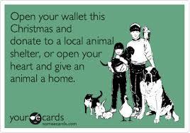 Tι μπορούμε να κάνουμε για τα ζώα που γιορτάζουν;