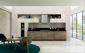 Contemporary Kitchen Cupboards Kitchen Choose Contemporary Kitchen Cabinets For Sale Wholesale