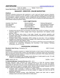 marketing resume website job sample resumes photo ecommerce marketing manager images regarding marketing resume website marketing resume website