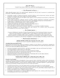 s buyer resume media buyer resume aurt digimerge net aploon media buyer resume aurt digimerge net aploon