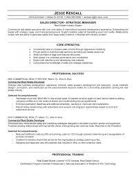 cover letter real estate agent resume vaneza co resume skills real estate