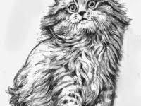 93 Cartoon Anime ideas | cartoon, anime, <b>cartoon cat</b>