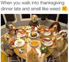 thanksgiving-memes-nov-funny-15-640x577.jpg via Relatably.com