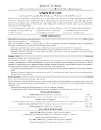 Executive Resume Samples  executive resume samples   professional