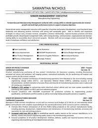 resume templates professional profile template example of a 93 exciting professional resume templates