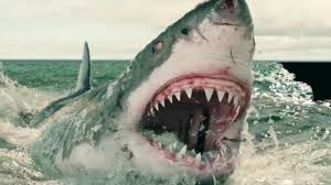 The Absolute Best <b>Shark Movies</b> Of All Time - YouTube