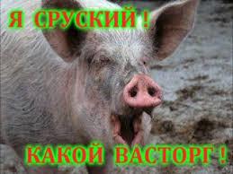 Соболев раскрыл планы Рады на завтрашний день - Цензор.НЕТ 7289