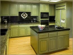 regina bilotta yellow green kitchen sxjpgrendhgtvcom splendid light green kitchen cabinets with small u shapes kitchen yell