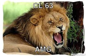 Snarling Lion Meme Generator - DIY LOL via Relatably.com