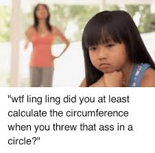 wtf ling ling did you at least calculate the circumference when ... via Relatably.com