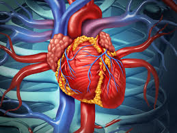 Open-<b>Heart</b> Surgery: Risks, Procedure, and Preparation