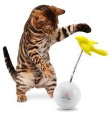 SmartPet, Smart игрушки для собак и кошек - Электро-Oшейники.ру