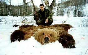 Камчатка весенняя охота на медведя, бурый медведь на камчатке
