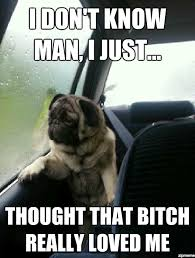 Best Of The Introspective Pug Meme | WeKnowMemes via Relatably.com