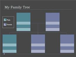 timelines office com family tree photos