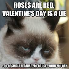 11 Anti Valentine's Day Grumpy Cat Memes   Campus Riot via Relatably.com