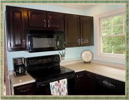 gel stain kitchen cabinets:  image of gel staining kitchen cabinets gel stain colors remarkable gel stain kitchen
