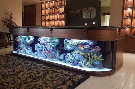 aquarium company that designs service supplies aquariums and builds marine and fish aquariums in los angeles and orange county office desk aquarium