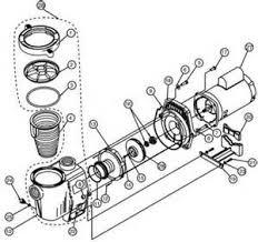 watch more like pool pump diagram pool pump motor parts diagram on pentair pool pump wiring diagram