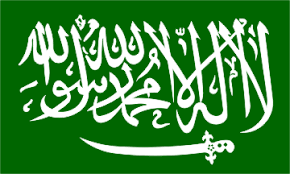 Image result for saudi flag